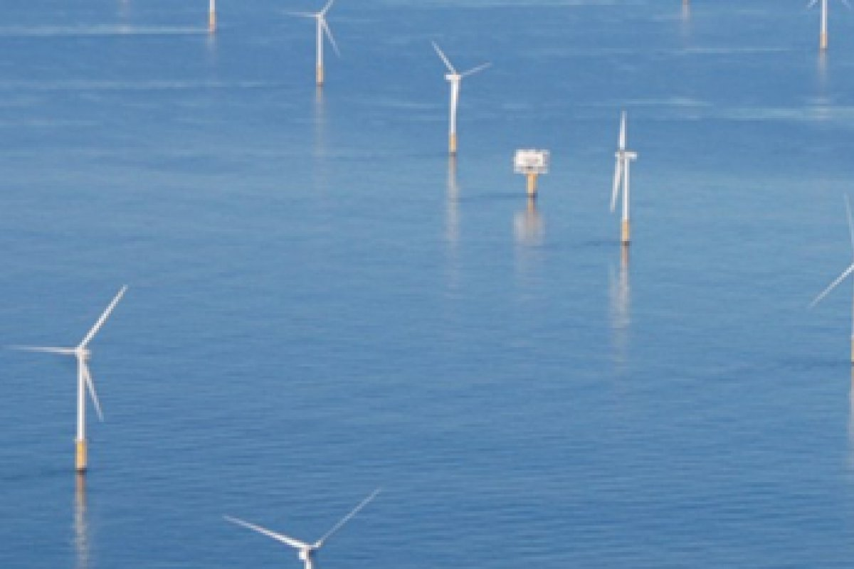 Offshore wind farm from above
